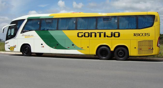 gontijo3